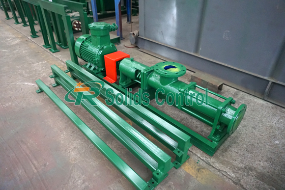 Screw Pump For South Africa Client